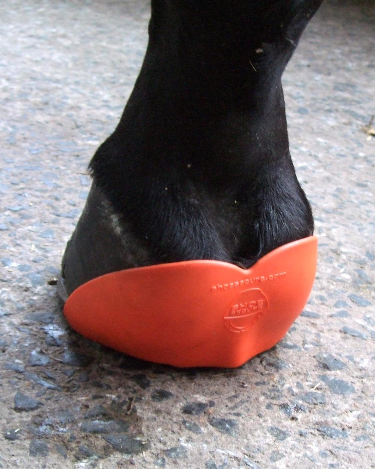 Shoesecure+orange.jpg