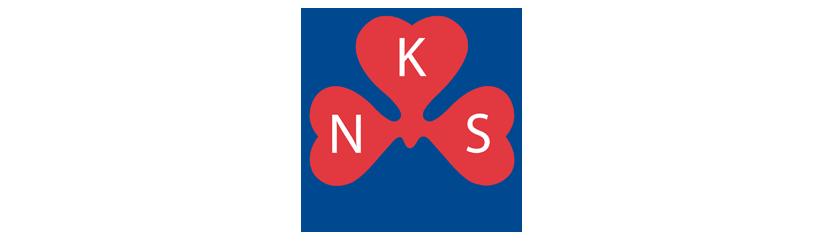 NKS2.png
