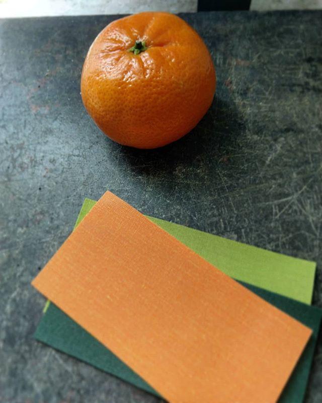 Juicy Fabric Selections : Orange Crush, Cedar Green & Kiwi 🍊🌲🥝 #PresentYourselfBeSeen