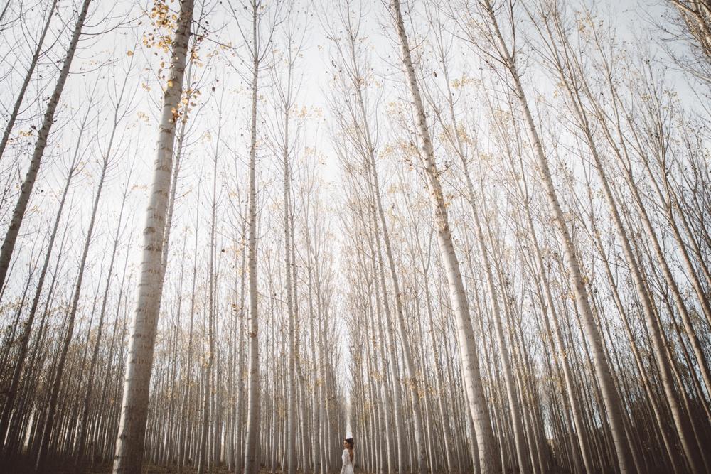 juan-trujillo-wedding-inspiration-47.jpg
