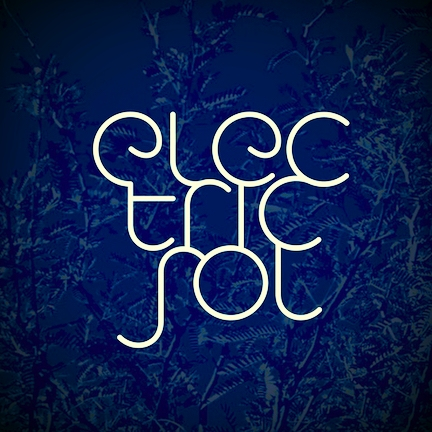 I write and perform my own music under the Electric Sol banner. I'm always open to collaborating with other artists, writing for other artists, and writing songs and jingles for organizations.
