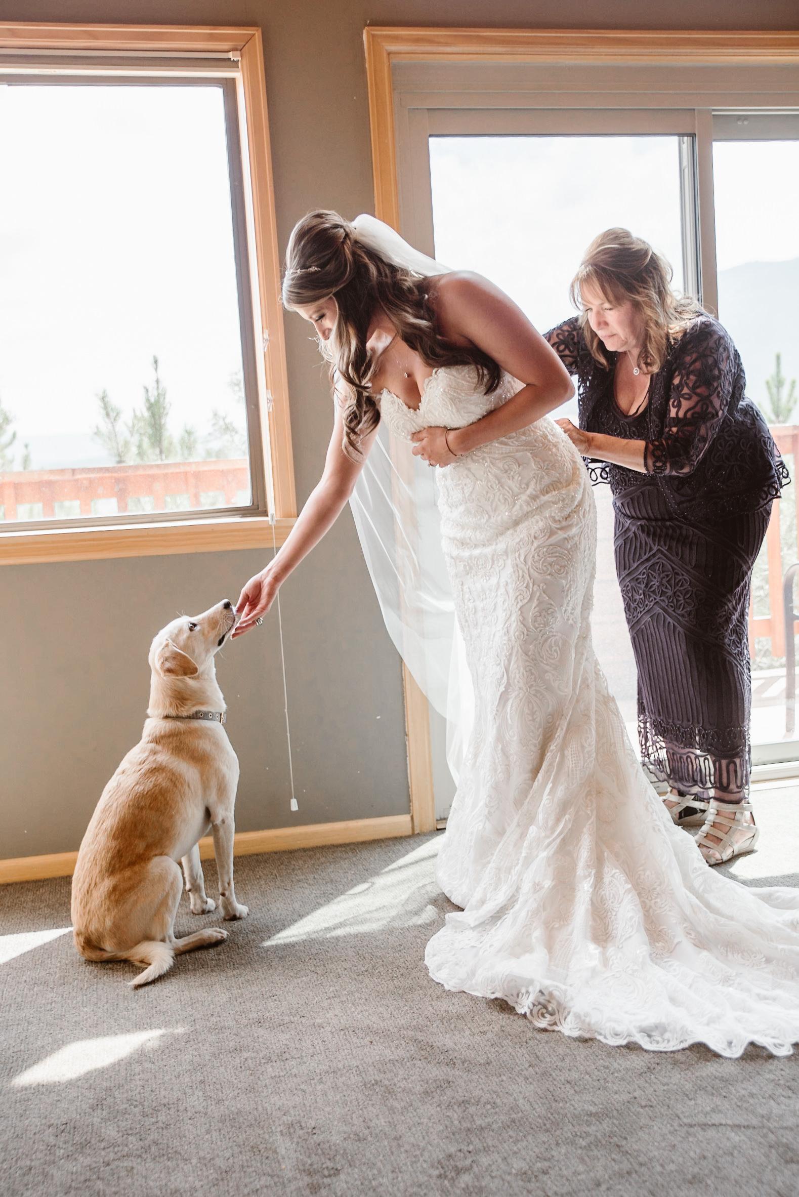 Bride, dog at Keystone, Colorado mountain wedding