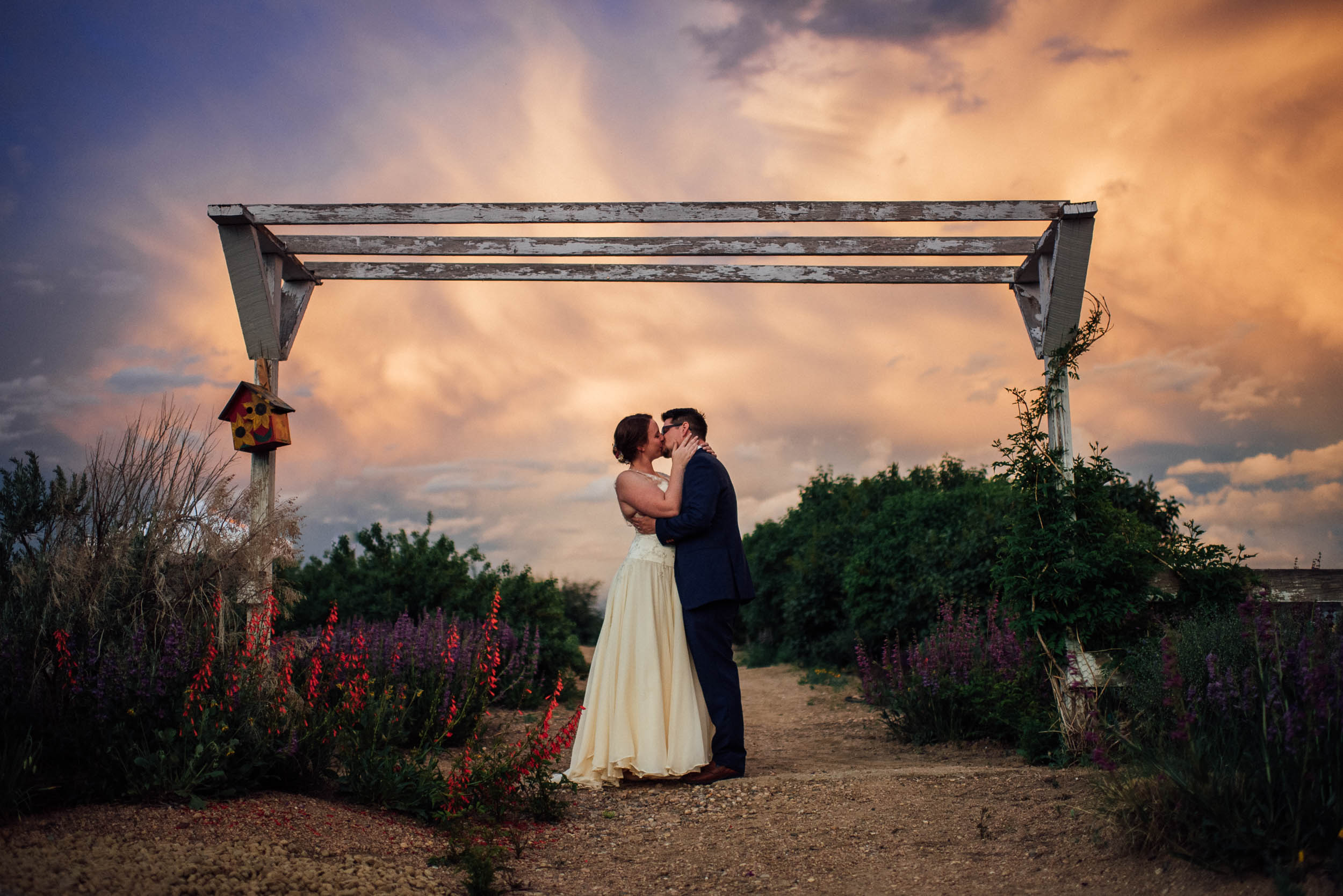 Colorado-Backyard-Wedding-Photographer-96.jpg