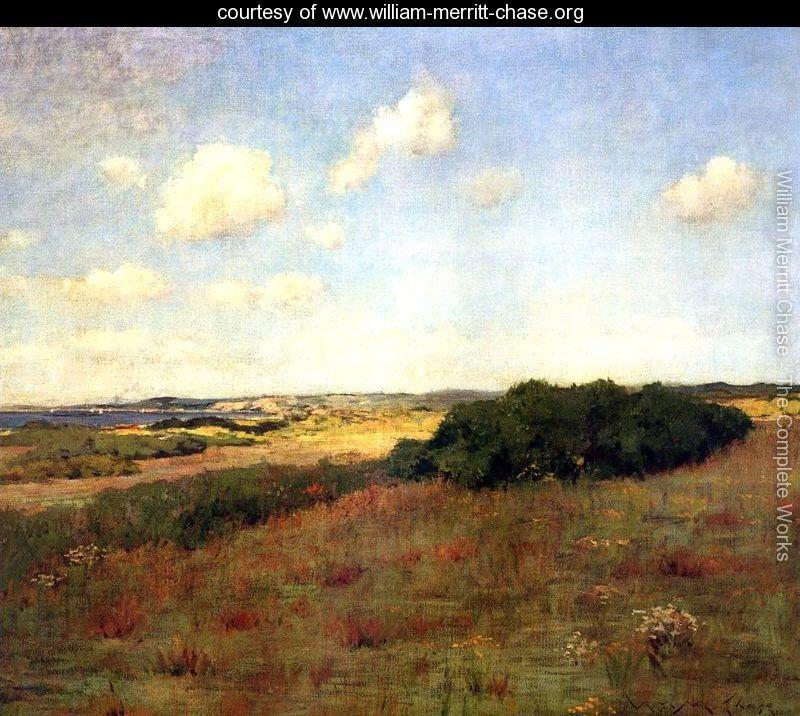Sunlight-and-Shadow,-Shinnecock-Hills,-c.1895-large.jpg