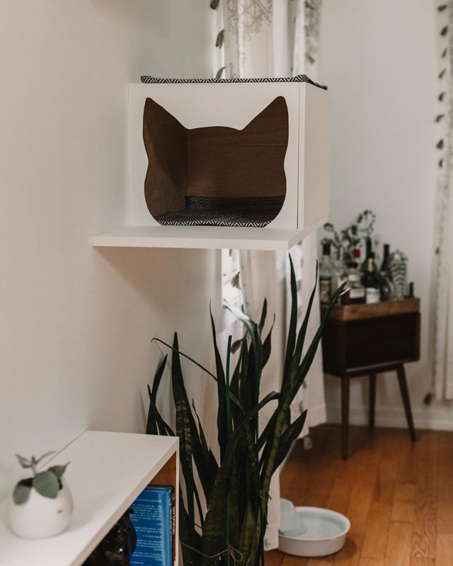 A designated space for your fur babies can be pretty and functional at the same time! . . . . . #furbabies #cathome #petsarefamily #petstyle #interiors #interiordesign #interiorstaging #interiorstager #stylist #lifestyleblogger #lifestyle #creativeideas #workingwithcreatives #cat #cathome