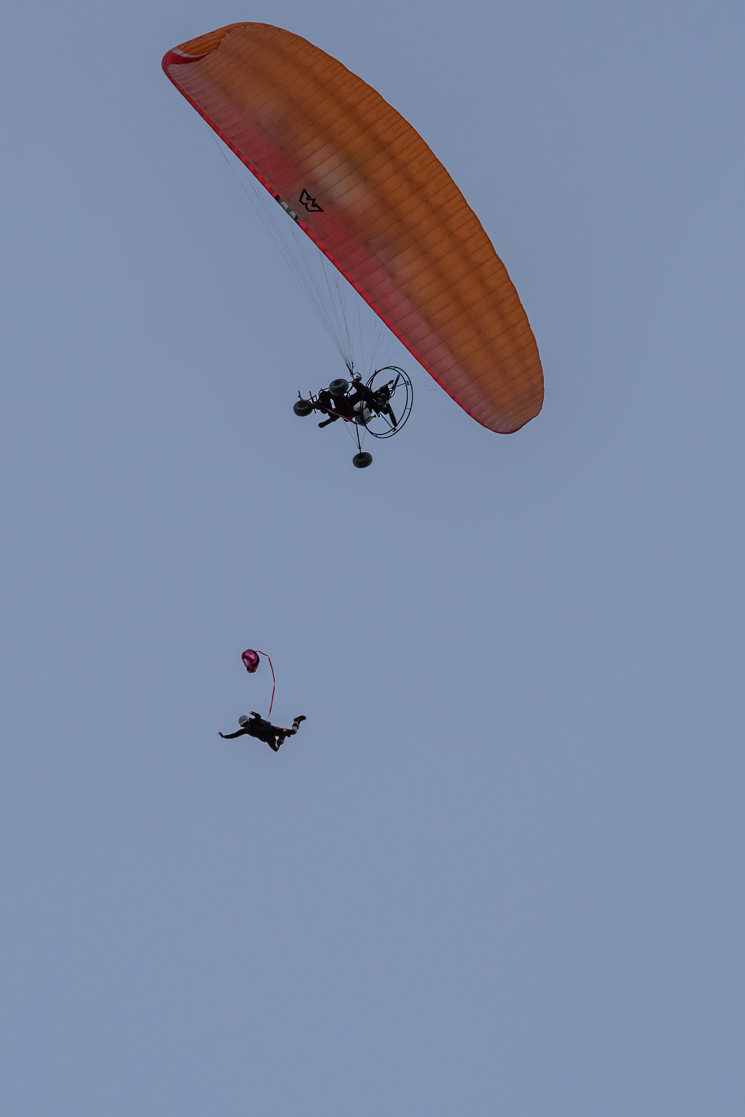Paramotor Skydives