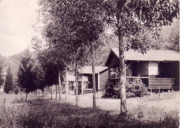 1911_cypress_camp.jpg