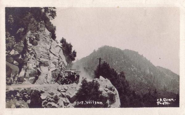 wilson5.jpg