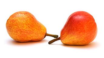 Organic D'Anjou Pears