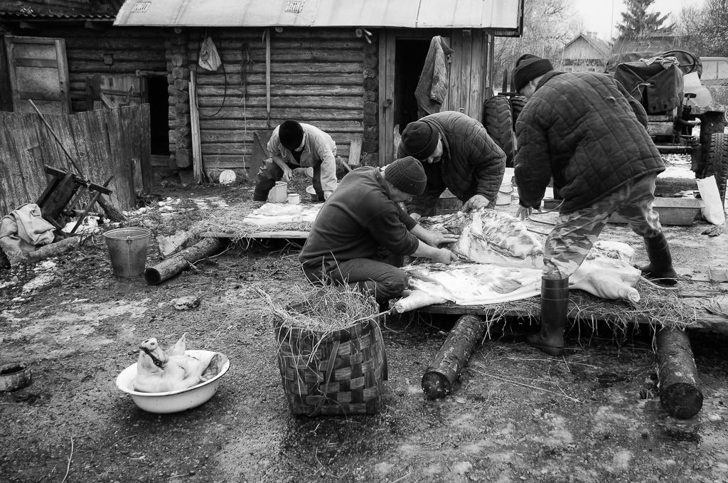 <p><strong>Grisslakten i Vérabki</strong>Vérabki, Vitryssland.<a href=grisslakt-i-vrabki-sv>The story →</a></p>