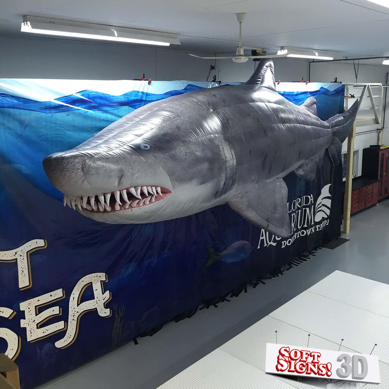 Florida Aquarium Shark