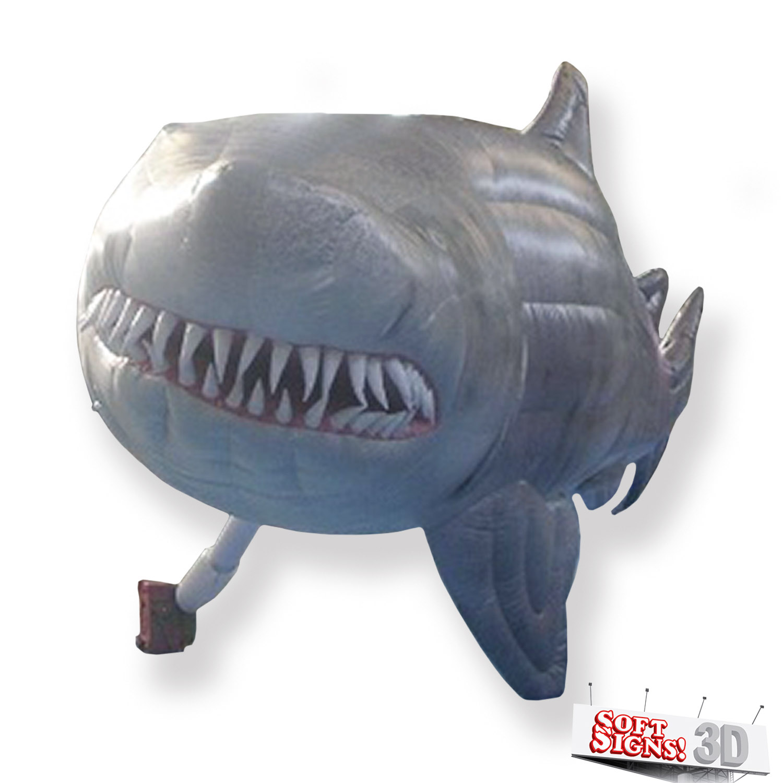 The Florida Aquarium Shark