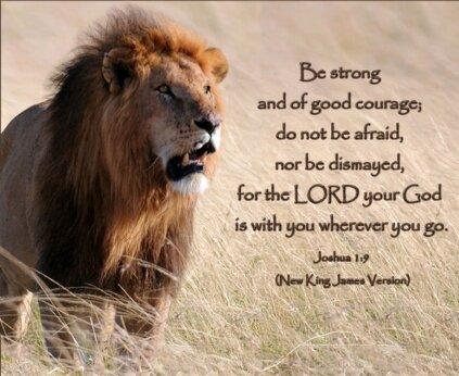 Lion of Judah for site.jpg
