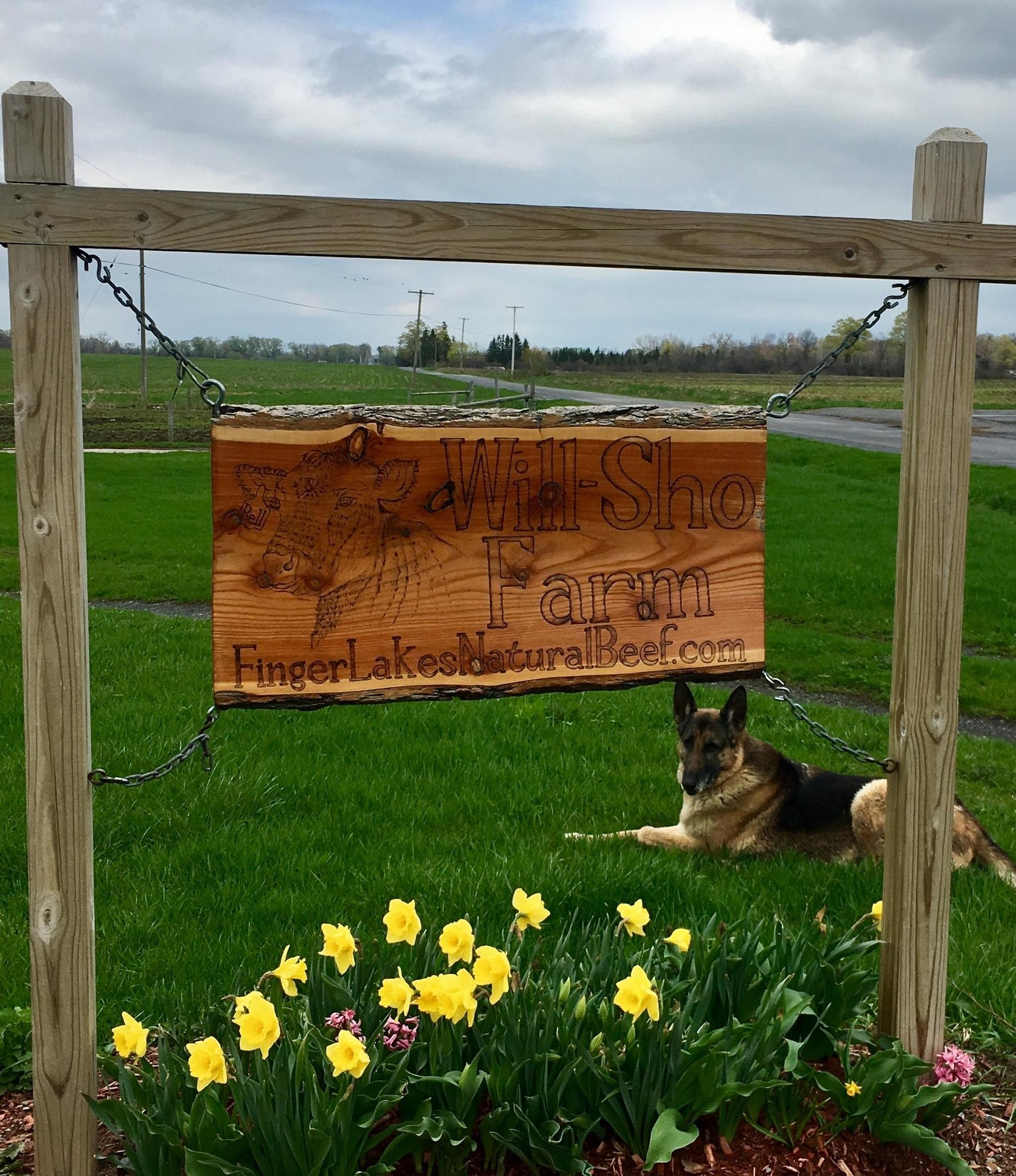 spring farm sign.jpg