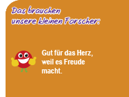 Bunte_Sommerstrahlen_Sommerflieder.png