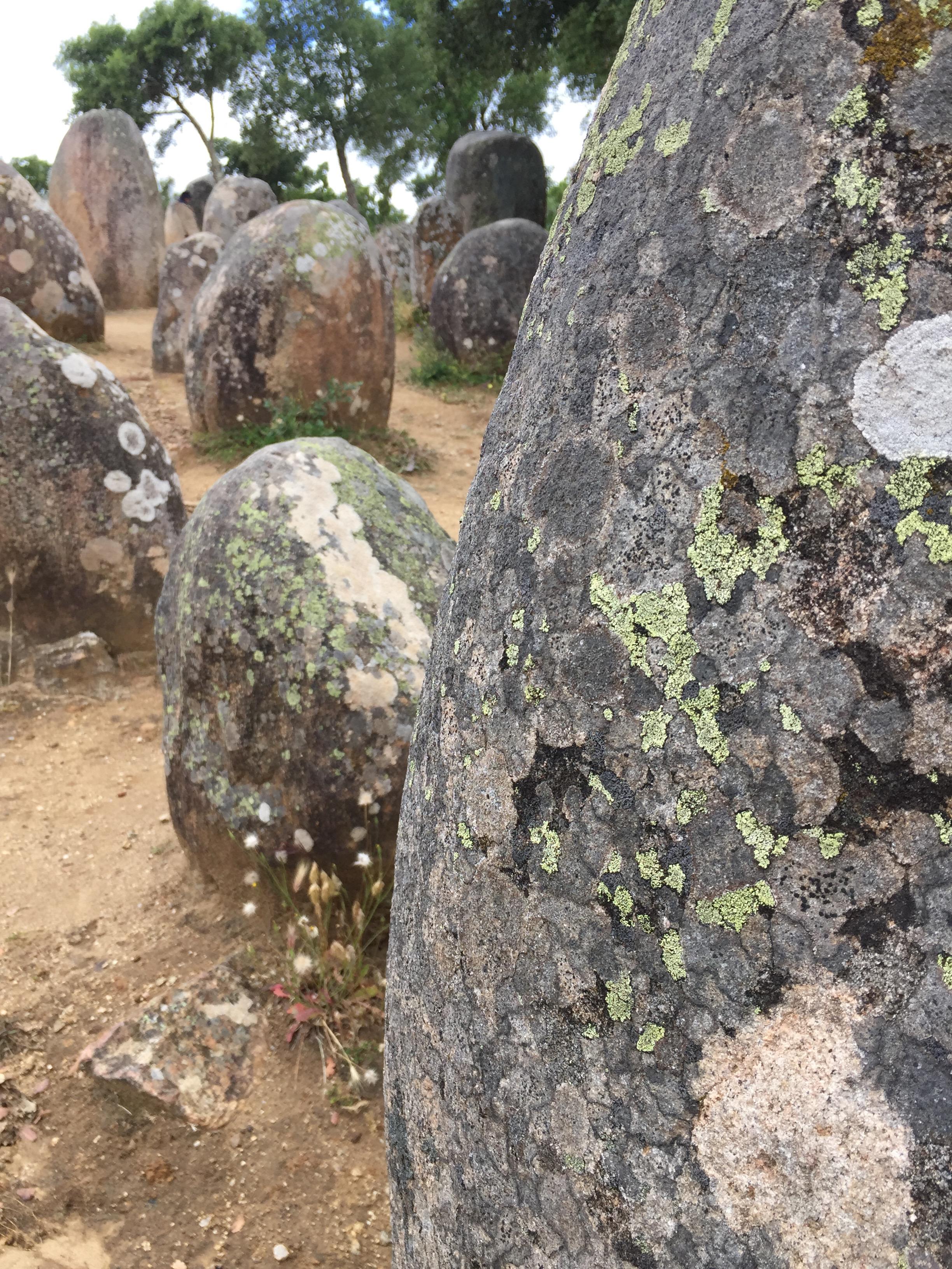 Constituído por uma centena de meníres, esse monumento pré-histórico estádistribuido pelo terreno em forma de elipse, ao longo de um eixo orientado a Leste-Oeste.