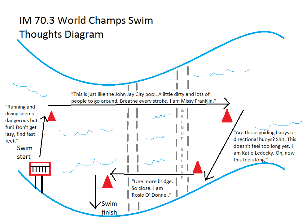 swim picture.png