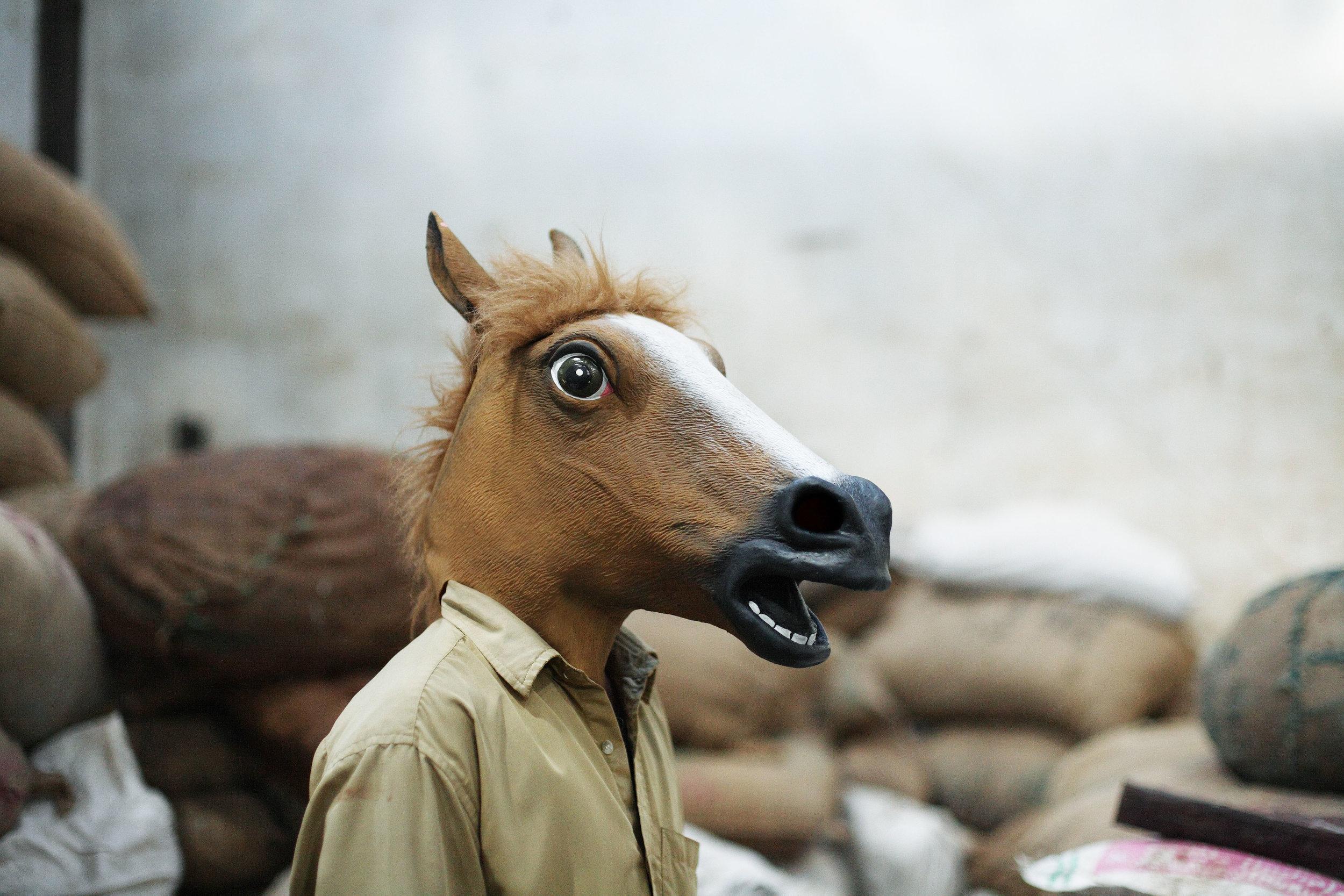 horse112.jpg