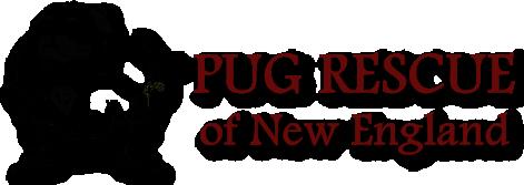 super-pug-logo.png