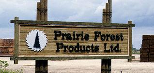 prairie-forest_products.jpg