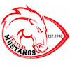mustangs_100_100.png