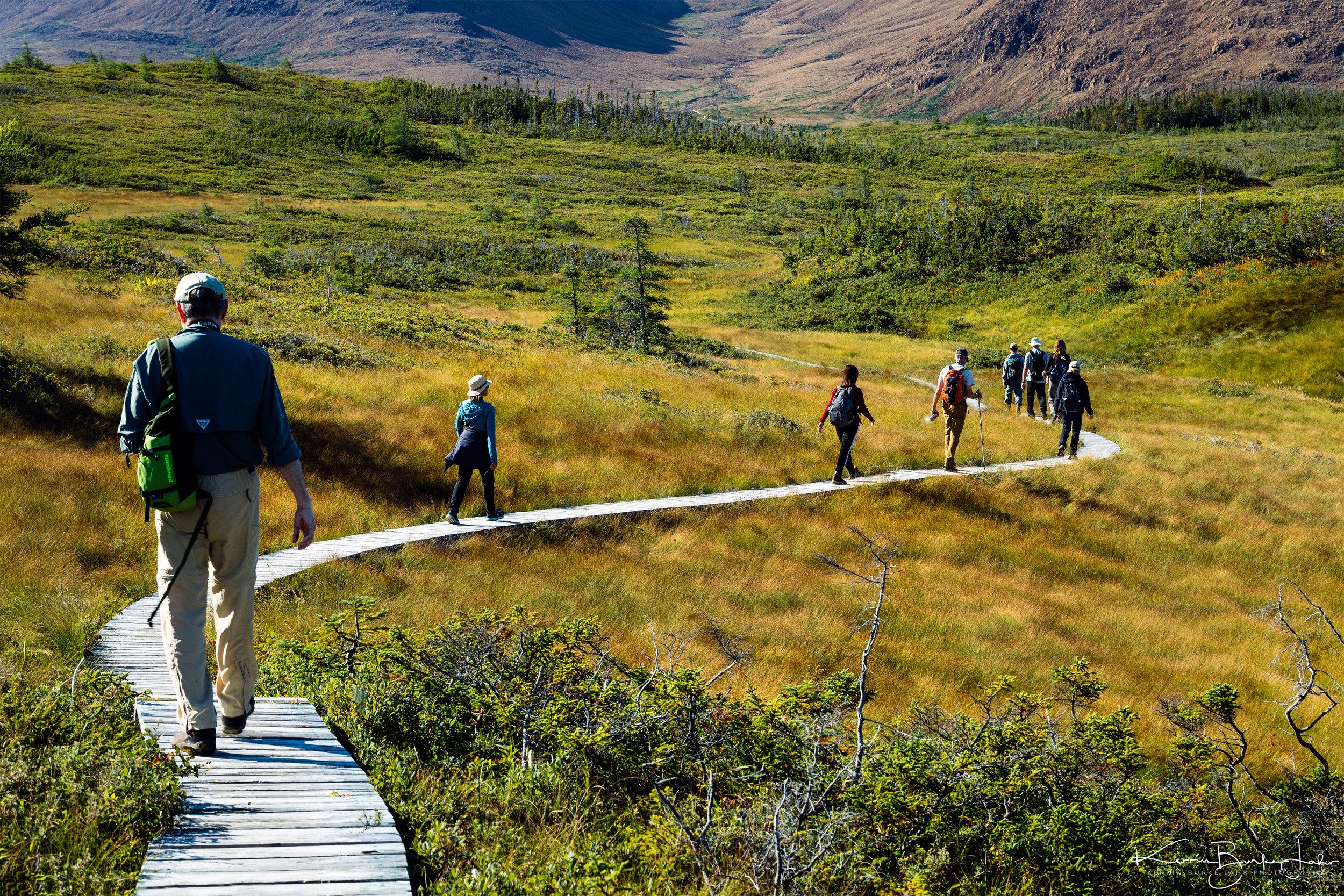 Gros-Morne-National-Park-Newfoundland-9-18-2017-40.jpg