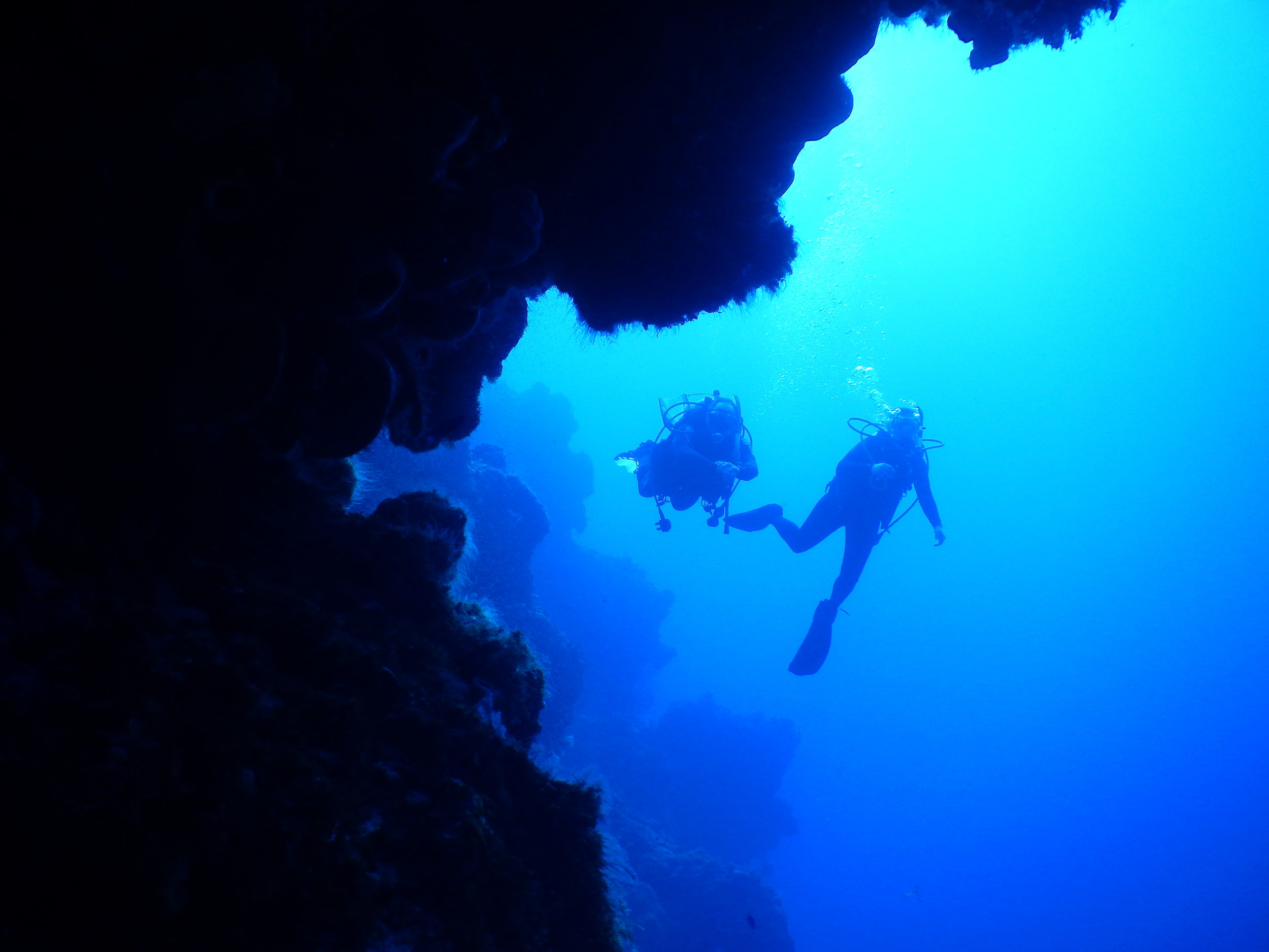 scuba diving the travelling artisan