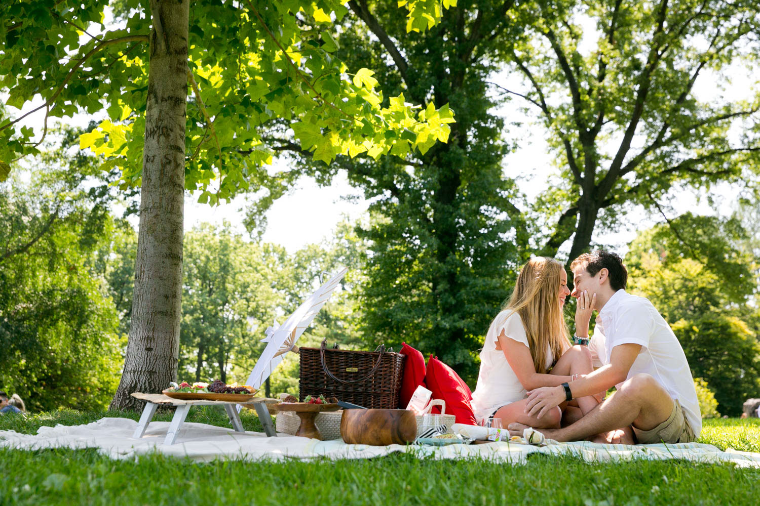 A romantic picnic in Central Park on a perfect day in August