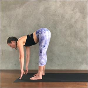 Half Forward Fold (Ardha Uttanasana) Inhale