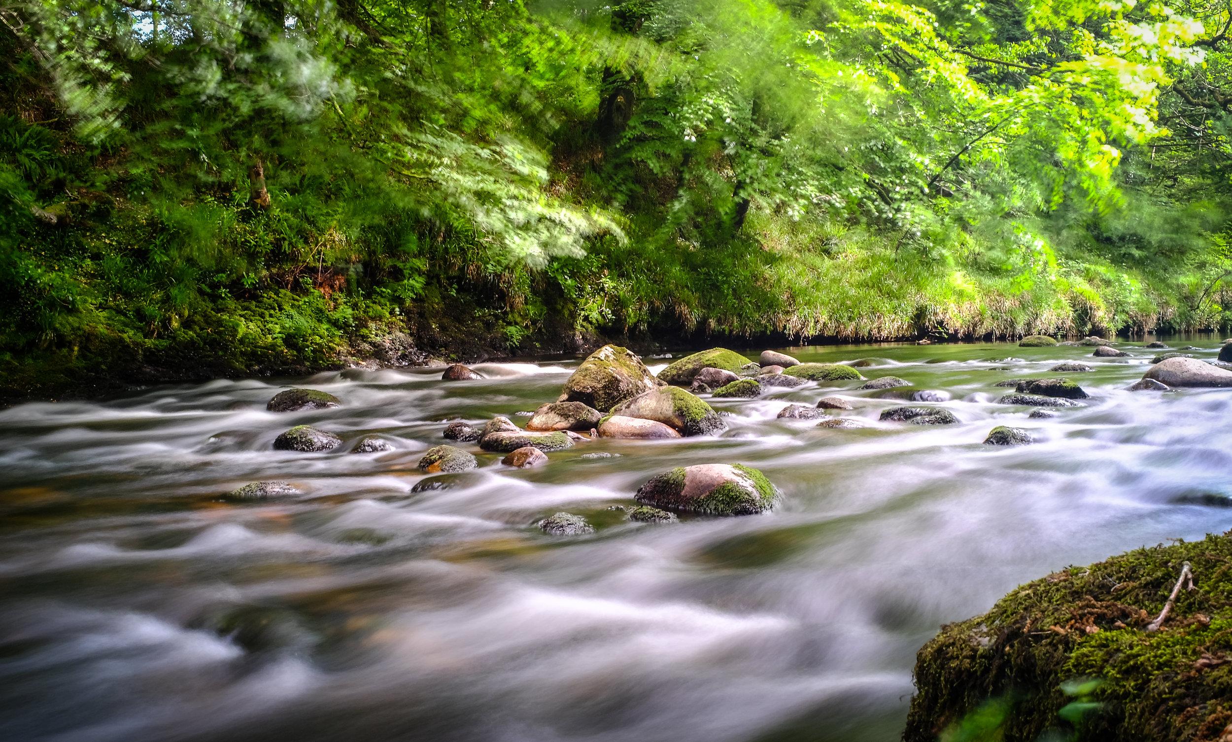 Dreamy Dartmoor...