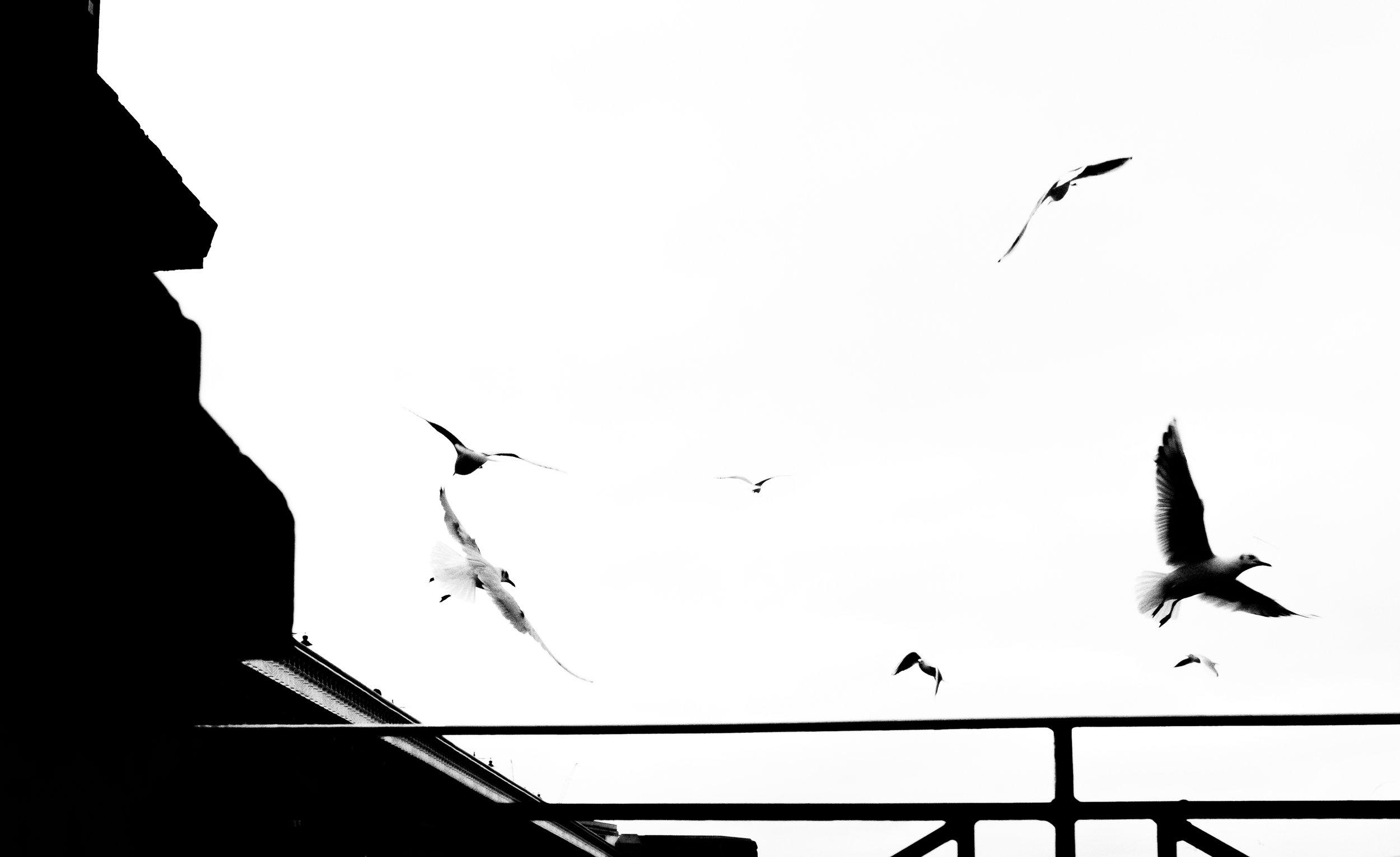 Urban geometry -