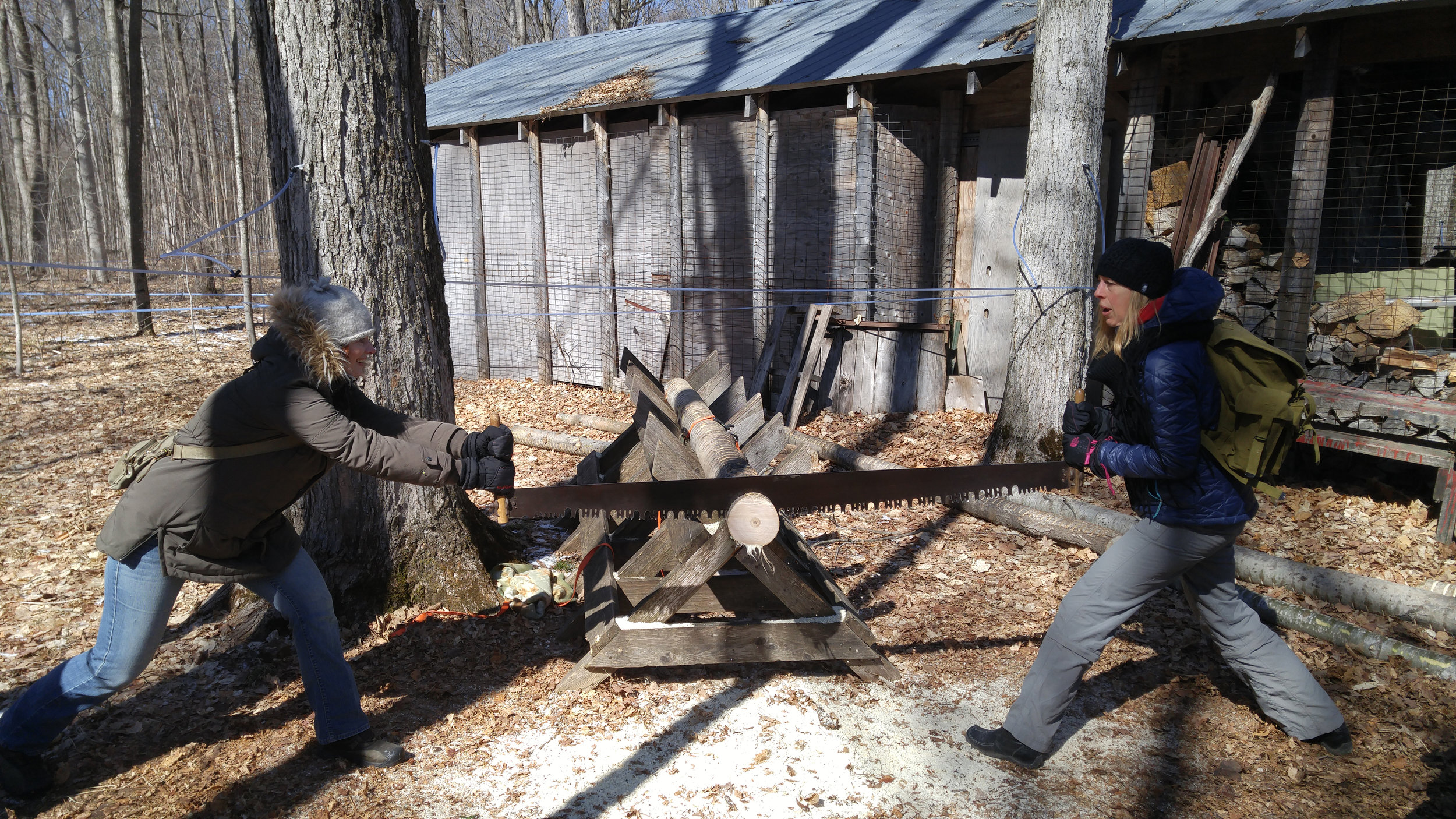 Sarah and Sara, showing 'em how it's done at log sawing competition.