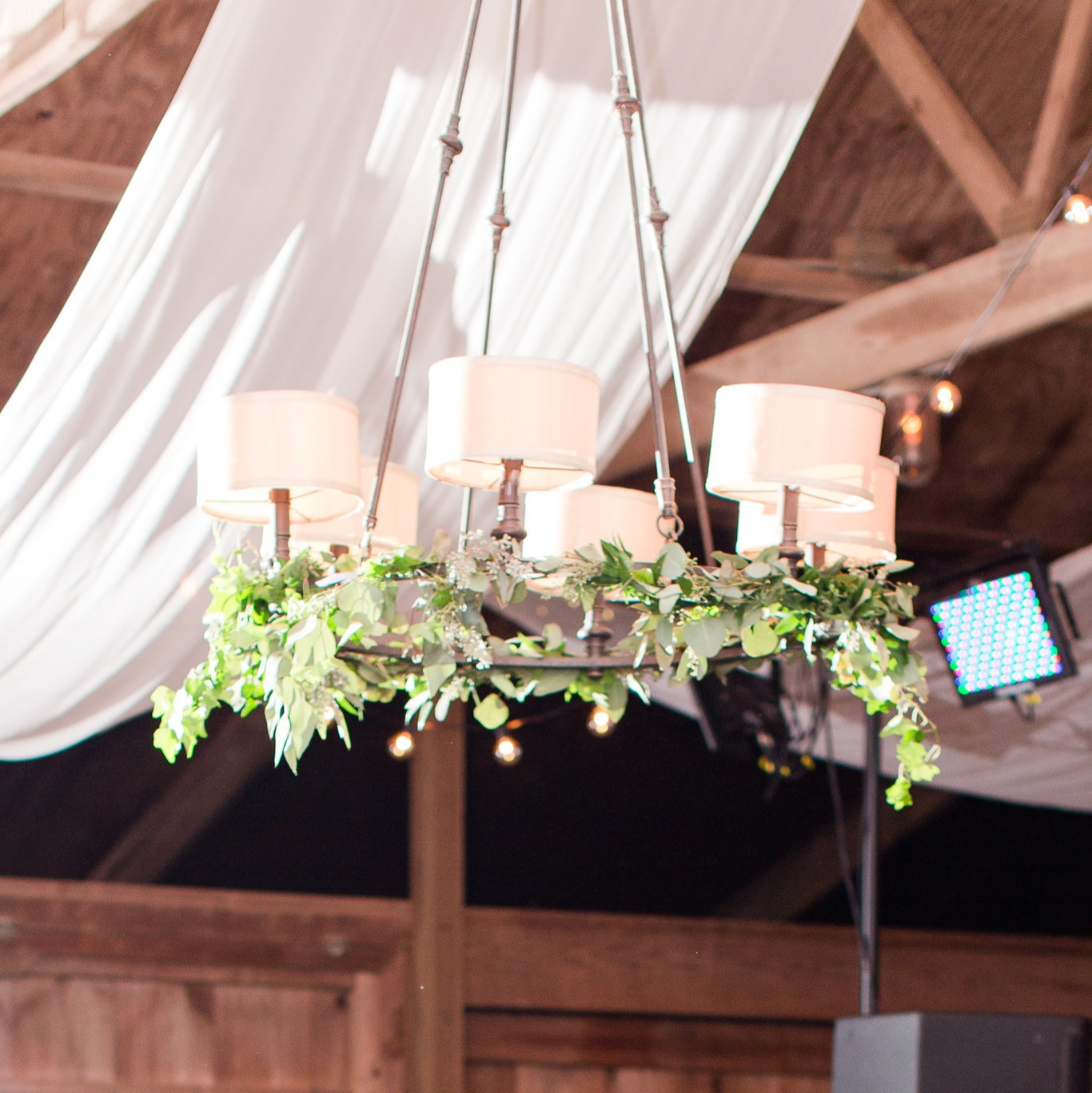 maida-murray-hill-wedding-leesburg-va-reception-bethanne-arthur-photography-photos-38.jpg