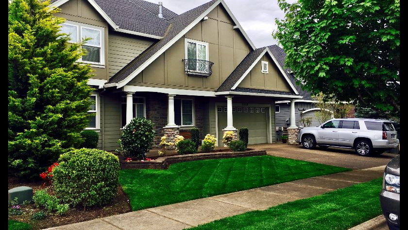 Residential landscaping of front yard