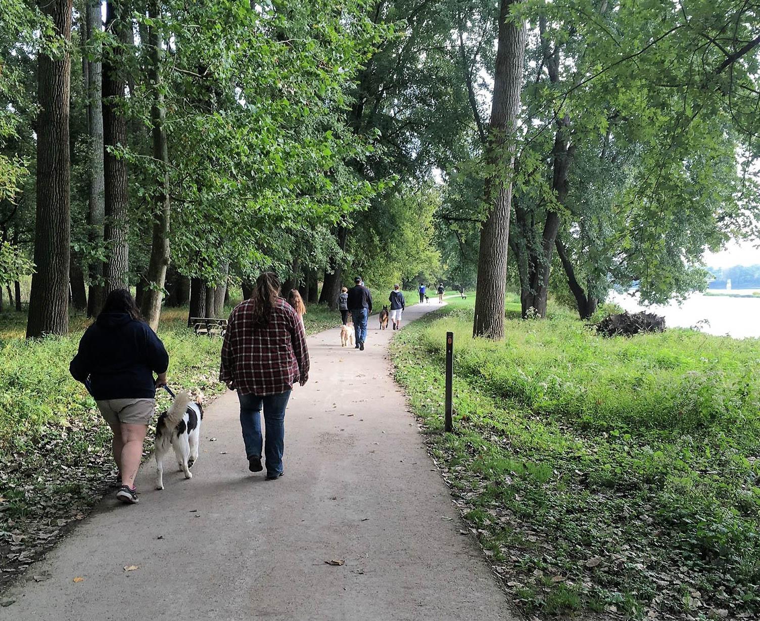 2017-sunday-walk-7_35482470592_o.jpg