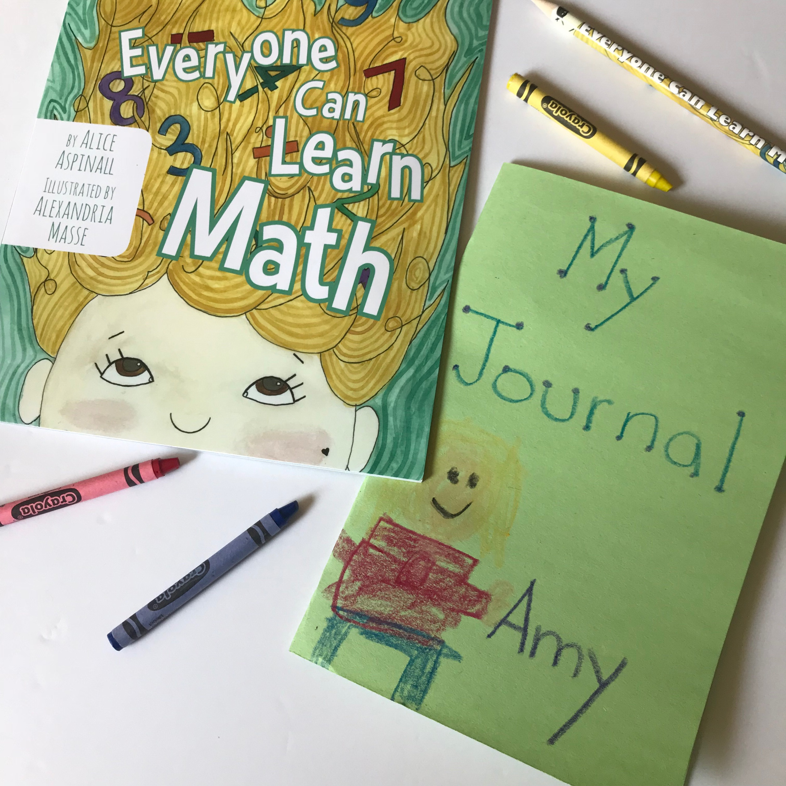 He created a journal, pretending to be Amy.