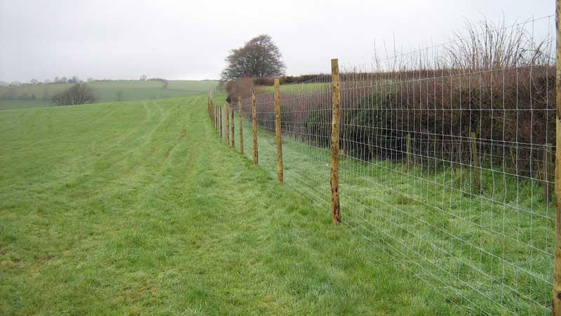 deer_fencing.jpg
