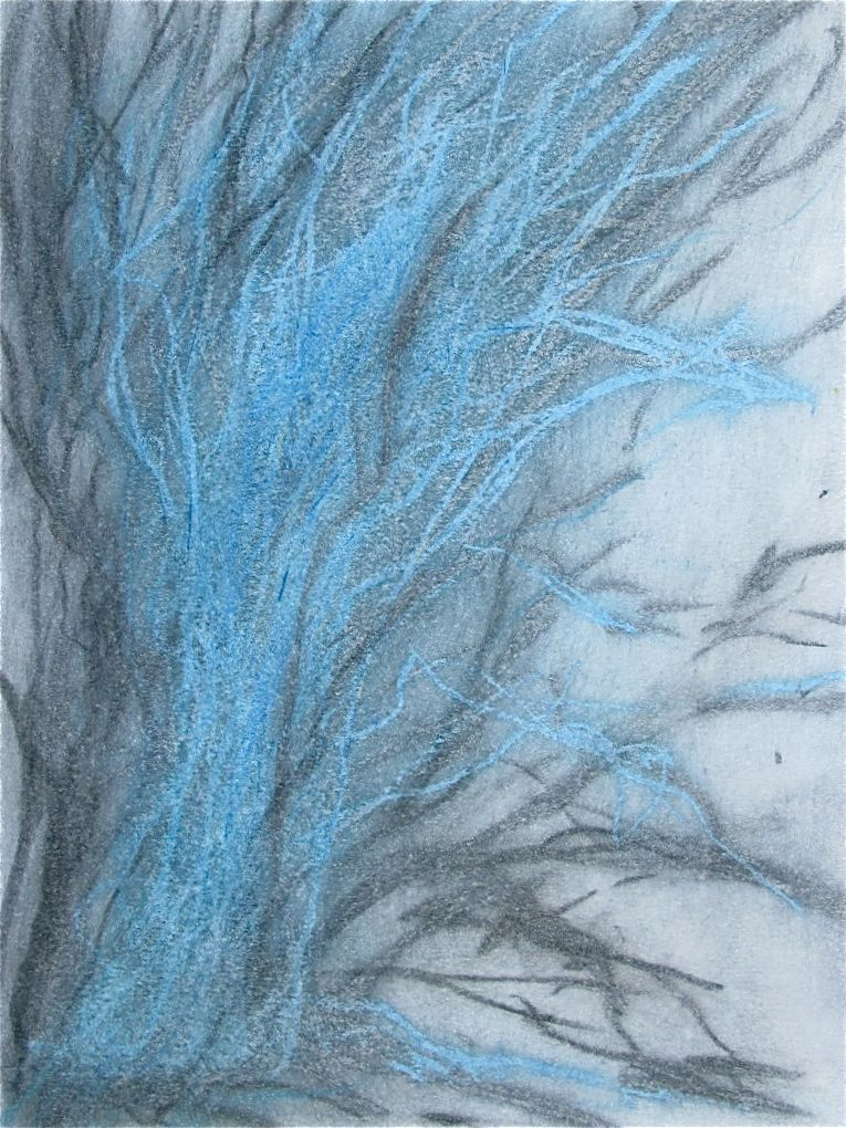 """Frozen in Place  , 2014 Graphite & Oil Pastel on Paper 12"""" x 19"""""""