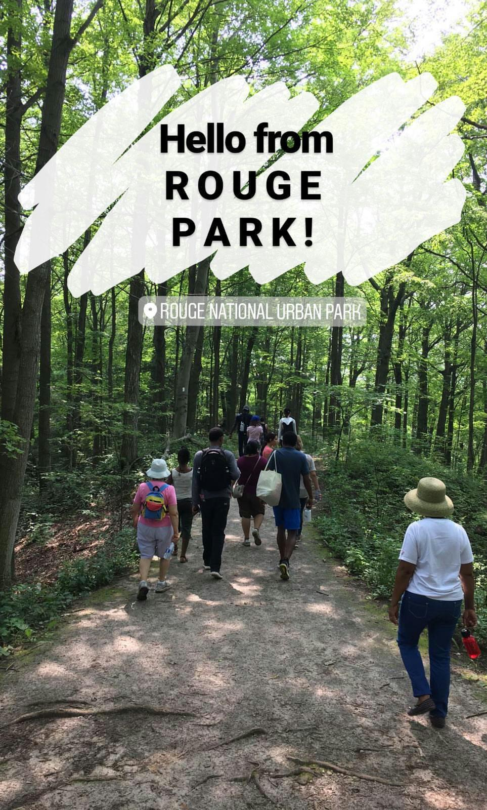 01 - Hello from Rouge Park.jpg