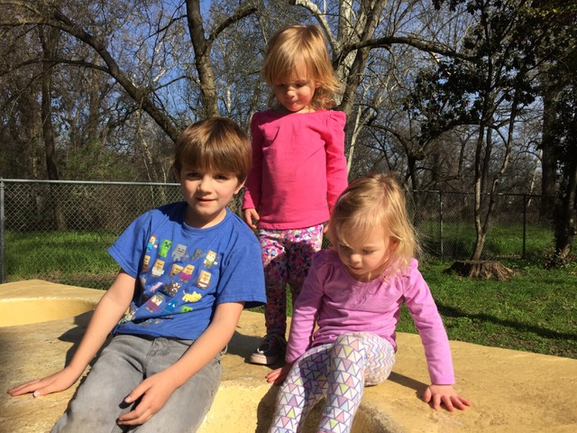Jan Burnham's Grandchildren: Finnley, Madelyn and Audrey.
