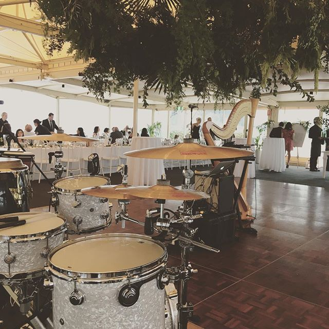 We feel right at home at weddings....not to mention ones that are jungle-like and bring out our inner monkeys! 🐒 . . . #weddinginspo #weddingdecor #follage #plantarrangement #flowers #weddingflowers #drumkit #congas #liveband #harp #weddingband #drumroll #functionroom #marquee #operahouse #harbourviews #onthewater #weddingbythesea