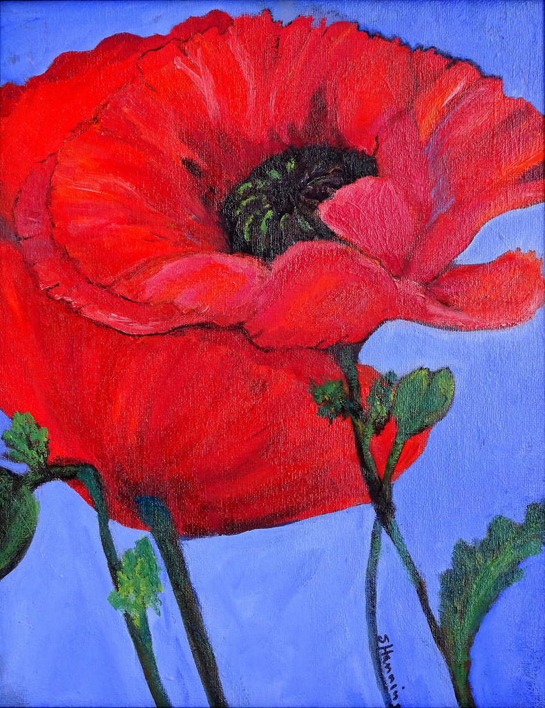 SVFAL, The Red House, Fine Art, Black Mountain, Susan Hanning-009.JPG