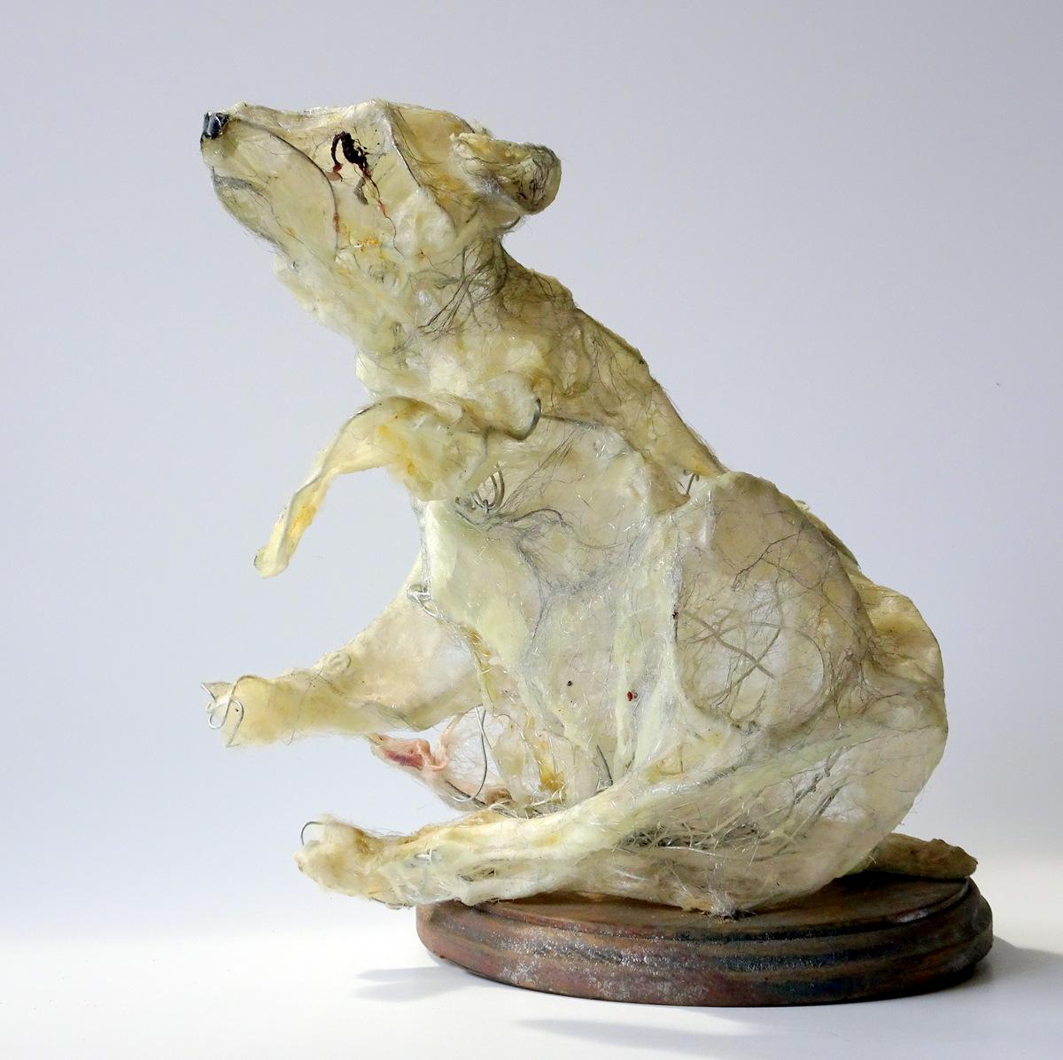Lois Steele, Wire Sculpture, Fine Art, SVFAL-001.JPG