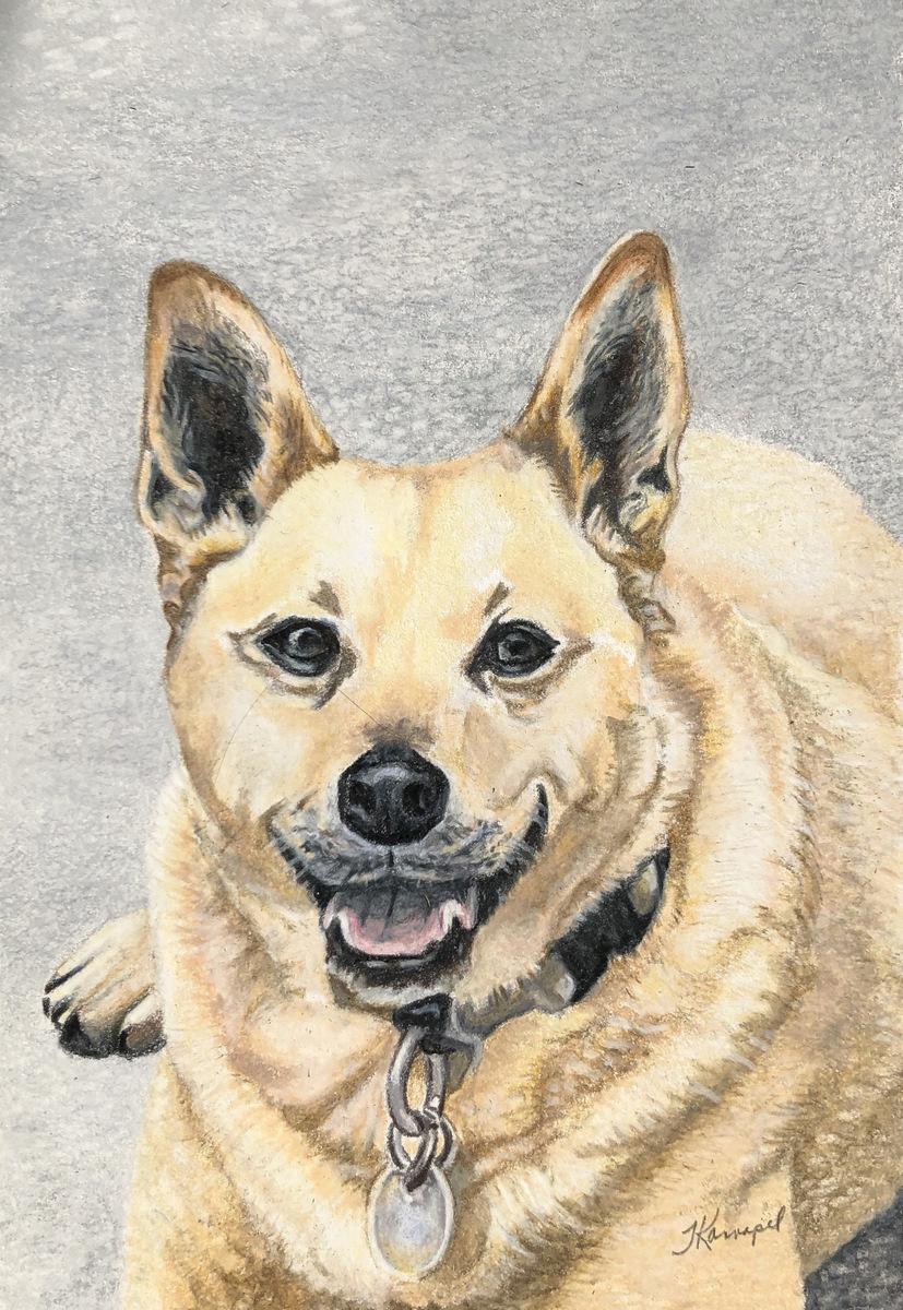 1-Tina Kannapel, Colored Pencil Dog Painting, SVFAL, Asheville, NC-002.JPG