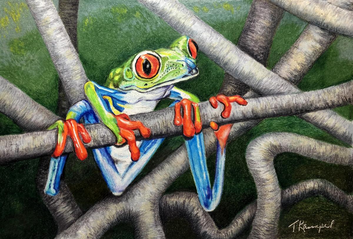 02-Tina Kannapel, Colored Pencil Nature Painting, SVFAL, Asheville, NC-1.JPG