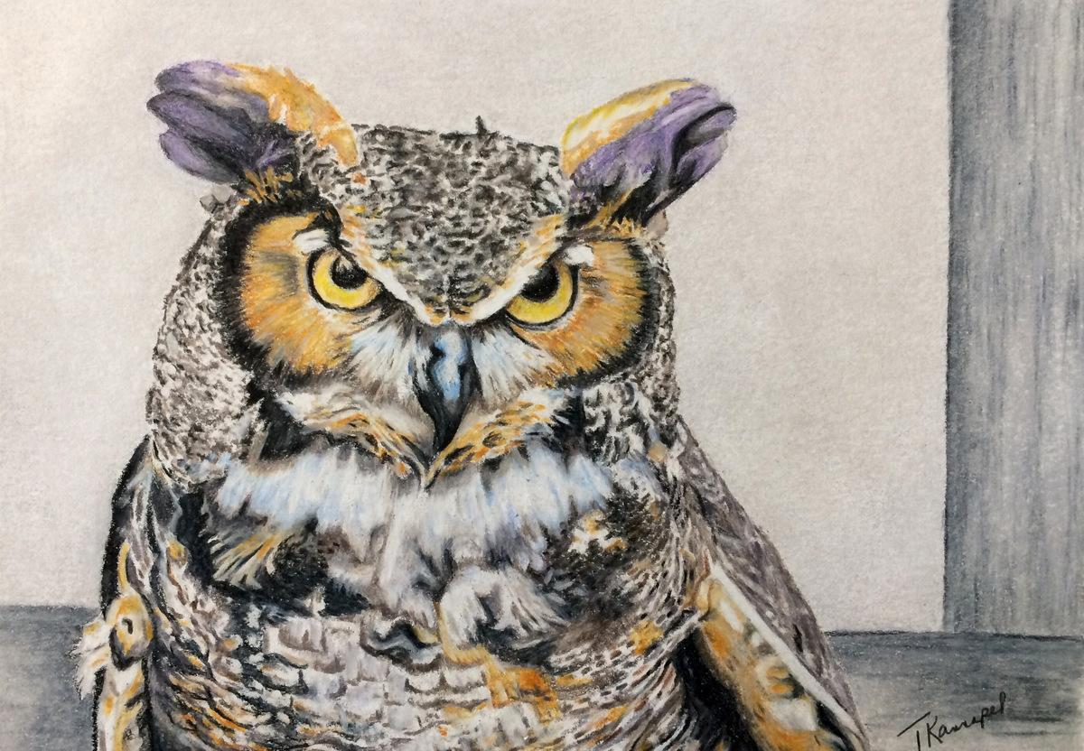 01-Tina Kannapel, Colored Pencil Painting, SVFAL, Black Mountain, NC-1.JPG