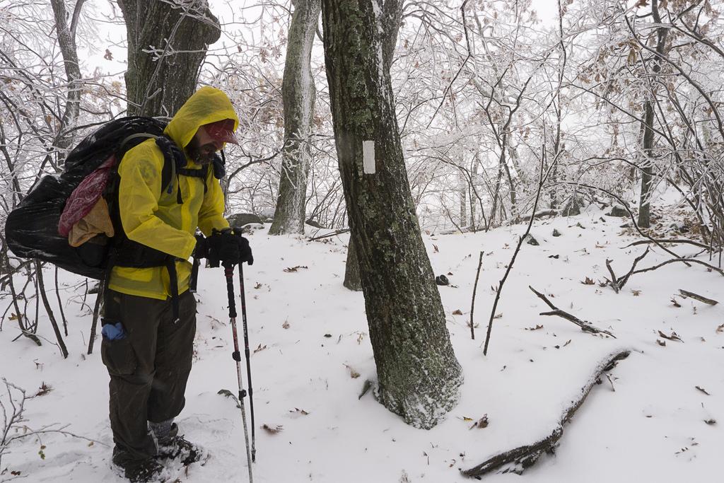 The Appalachian Trail in October, Virginia