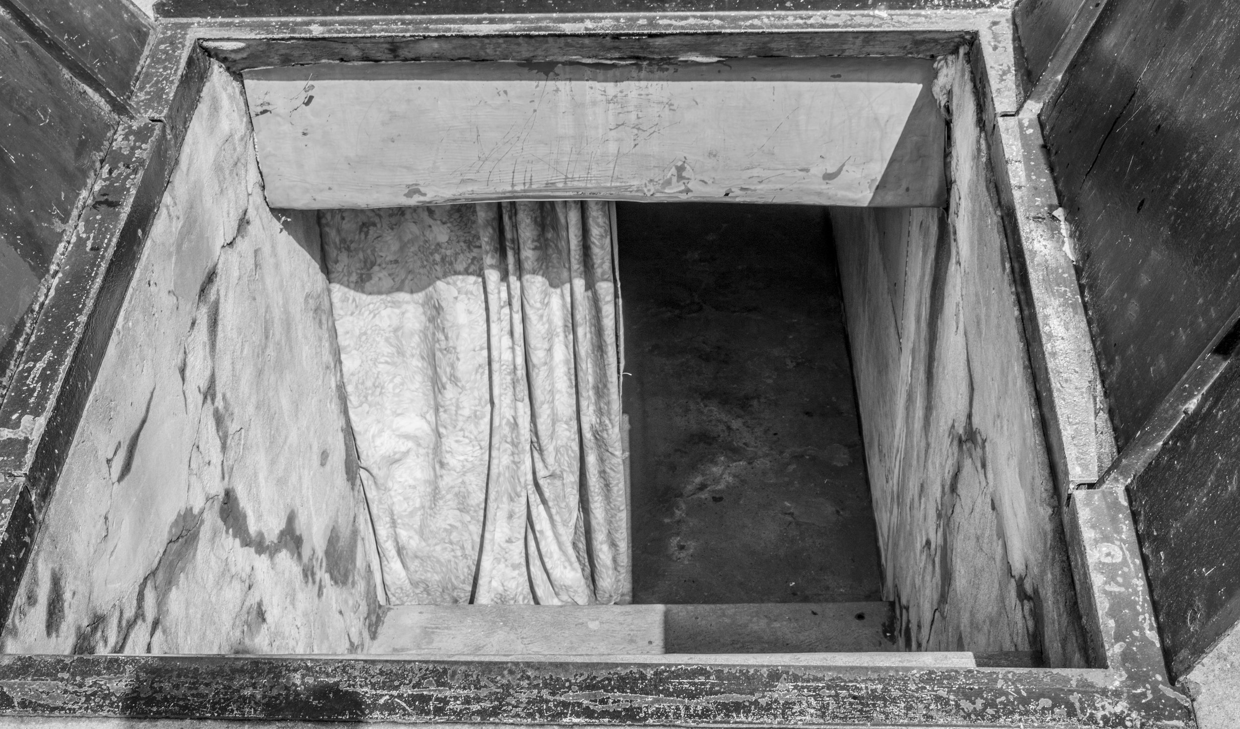 cellarbulkhead-springgarden.jpg