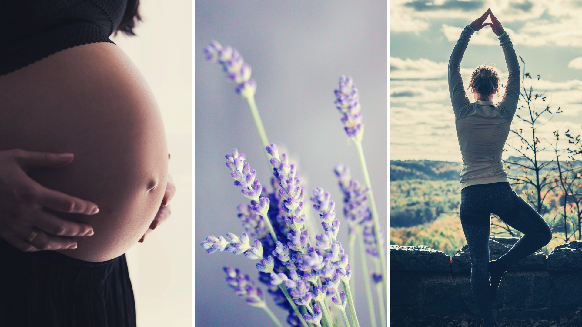 Event cover - Pregnancy, yoga, natural health.png