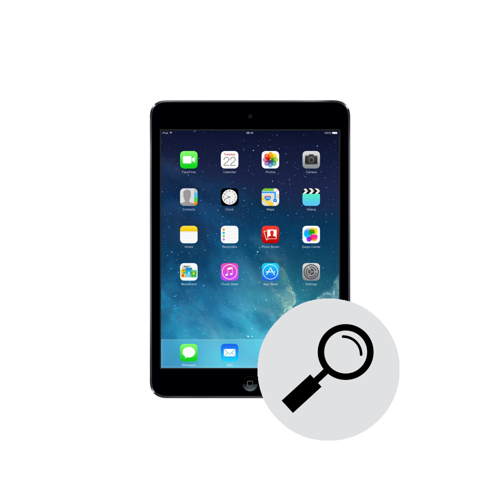 iPad mini 2  diagnisctc  .jpg